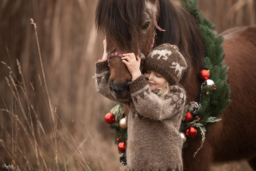 Kleines Mädchen im Islandpulli kuschelt mit Islandpferd im Weihnachtskranz