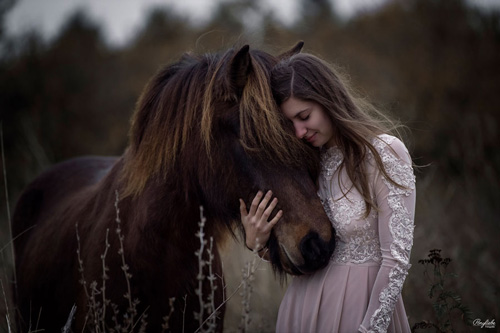 Braunhaariges Mädchen im Rosa Kleid und braunes Islandpferd kuscheln im Feld