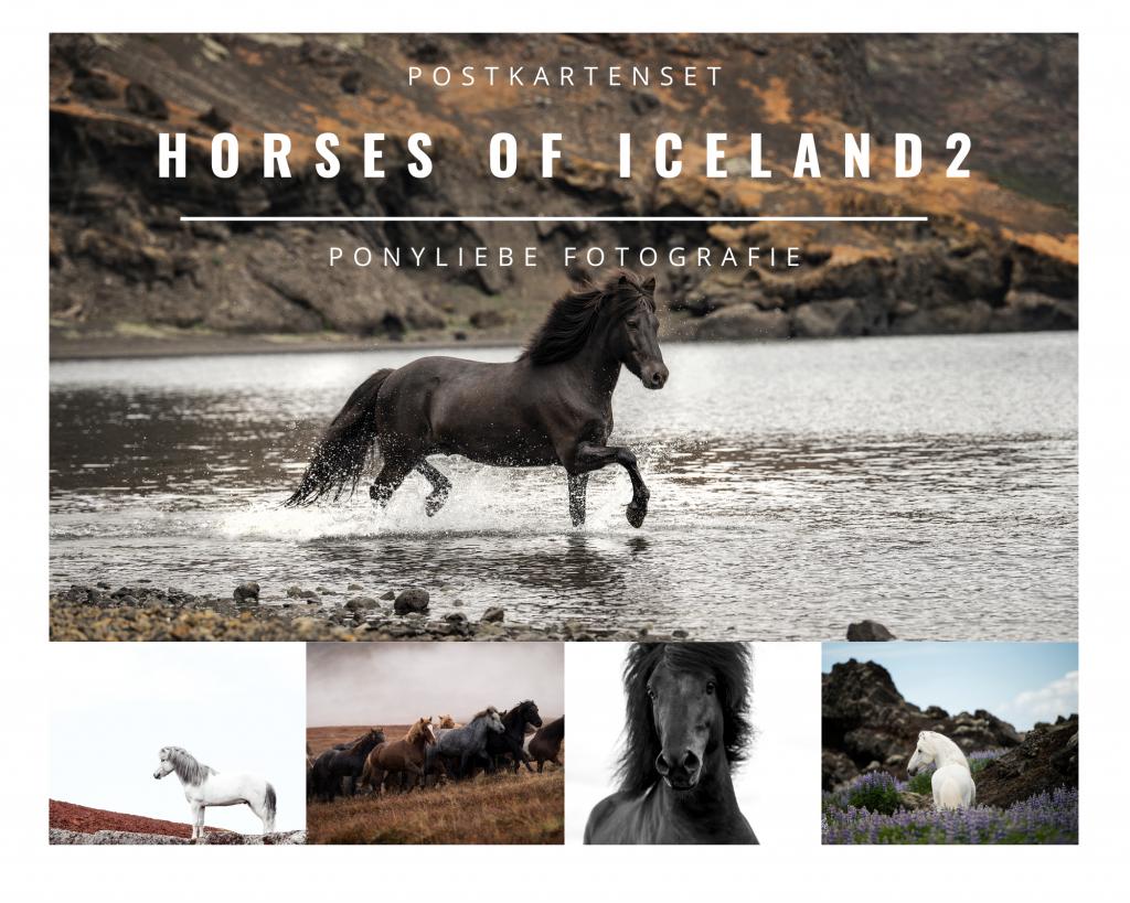 Horses of Iceland Postkartenset 2