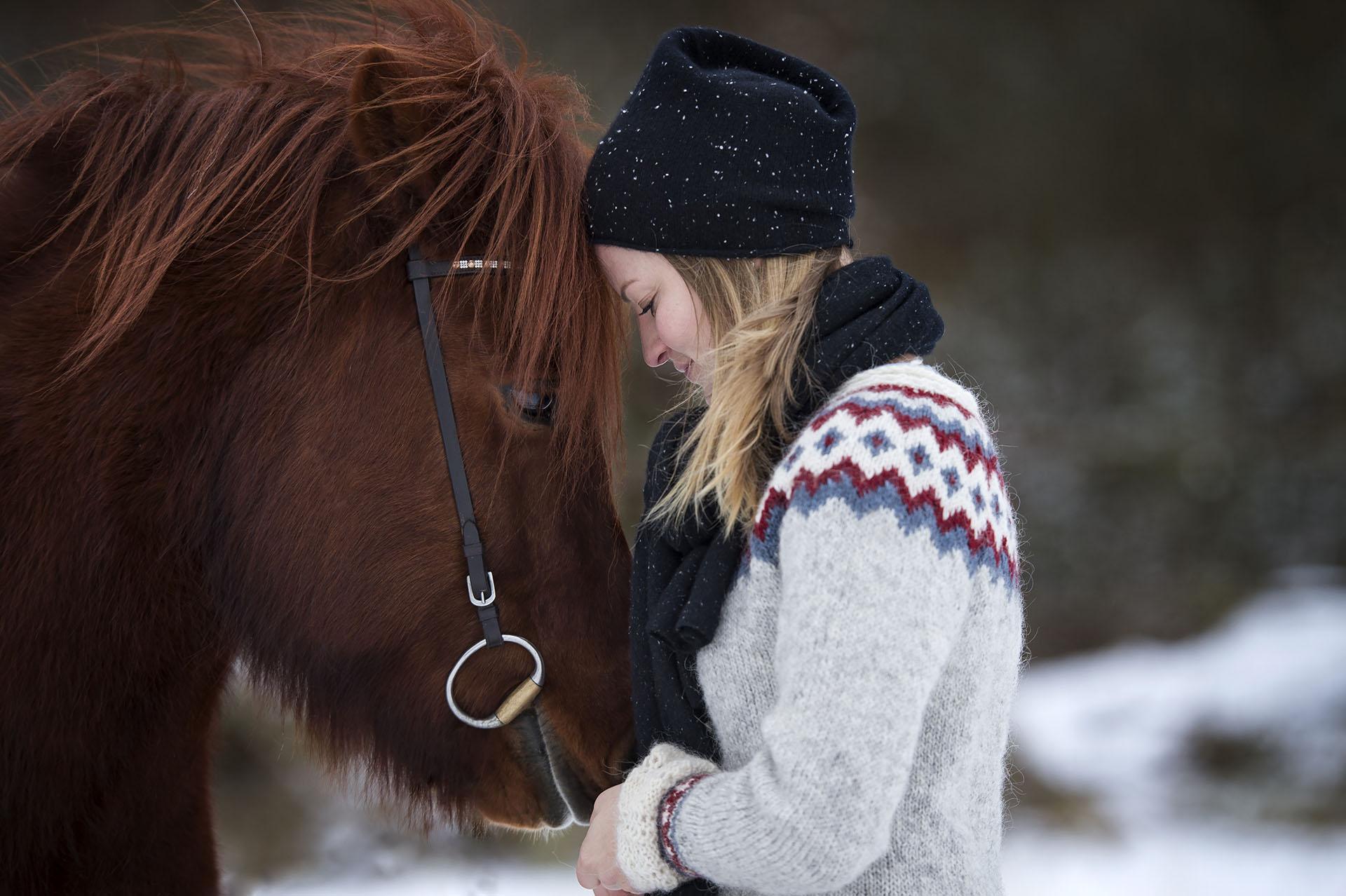 Mensch und Pferd kuscheln, innige Beziehung, Stirn an Stirn