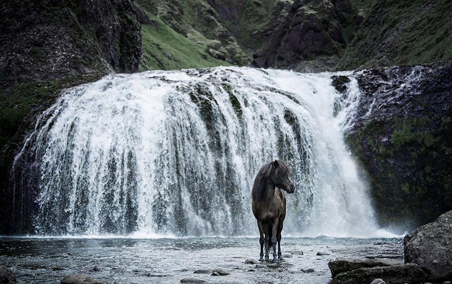 chasingwaterfalls_Stjórnarfoss_Rappe_Isländer