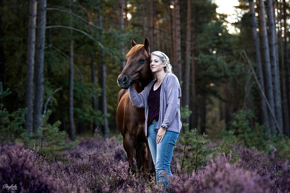 Die blühende Heide bei Nürnberg eignet sich perfekt für Pferdefotografie