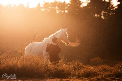 geschenideen_reiter_pferdeshooting_sonnenuntergang_zauberlicht_ponyliebe_vorschau