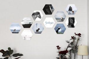 fotokacheln ponyliebe wandbilder