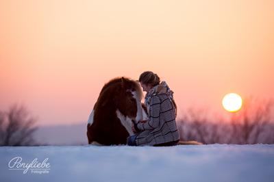 schneeshooting_tami_pferdefotografie_sonnenuntergang_ponyliebe_vorschau