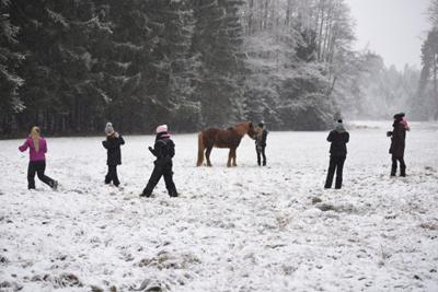 schneeworkshop_pferdefotografie_schneeshooting_ponyliebe_vorschau