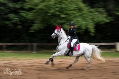 welche_objektive_eignen_sich_pferdefotografie_ponyliebe_vorschau