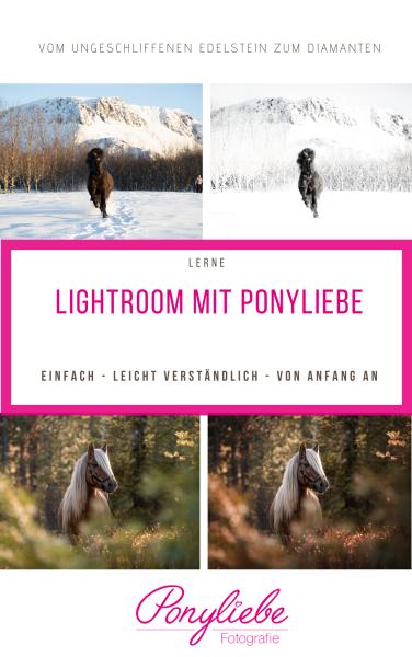 Bildbearbeitung mit ponyliebe (2)
