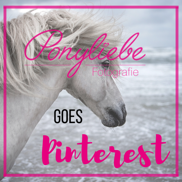 Pinterest Kurs Mock Up